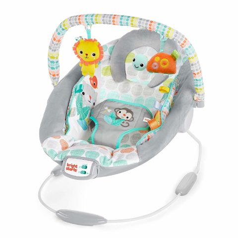 Bright Starts Whimsical Wild Cradling Bouncer Seat