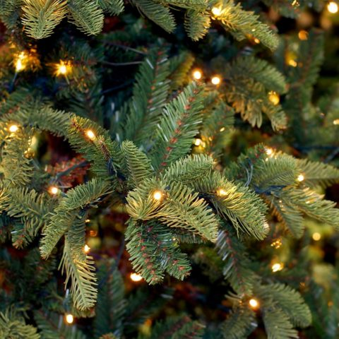 Prextex 100-Count Clear Green Wire Christmas Light