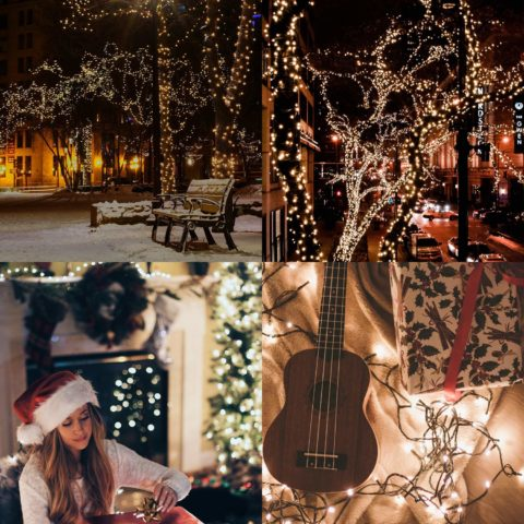 Quwin Waterproof LED Outdoor Christmas String Light