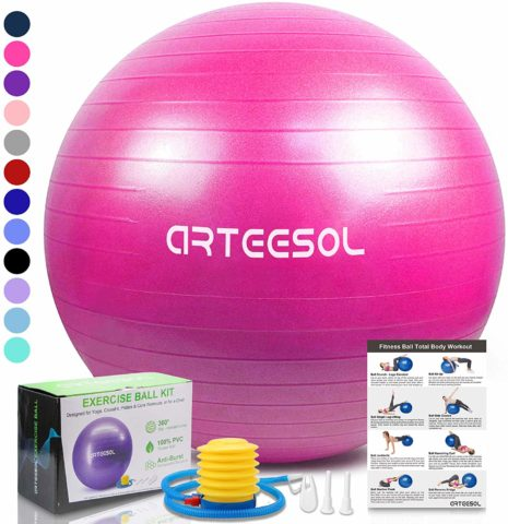 arteesol Exercise Yoga Ball, Extra Thick Stability